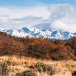 Autumn in Patagonia. Tierra del Fuego, Argentine side — Stock Photo #55022519