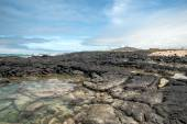 Isabela Island - is the largest island of the Galapagos — Stock Photo