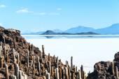 Isla de Pescadores, Salt lake Uyuni in Bolivia — Stock Photo