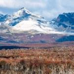Autumn in Patagonia. Cordillera Darwin, Tierra del Fuego — Stock Photo #75304395