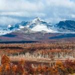 Autumn in Patagonia. Cordillera Darwin, Tierra del Fuego — Stock Photo #75304469