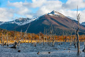 Lake Escondido, Isla Grande de Tierra del Fuego, Argentina — Stock Photo