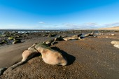 Low tide in the Beagle Channel, Tierra del Fuego — Stock Photo
