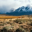 Autumn in Patagonia. The Torres del Paine National Park — Stock Photo #77172197