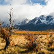 Autumn in Patagonia. The Torres del Paine National Park — Stock Photo #77172321