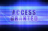 Access Granted — Stock Photo