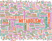 Metabolism — Stock Photo