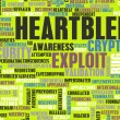 Heartbleed Exploit — Stock Photo #61906295