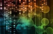 Genetic Background — Stock Photo