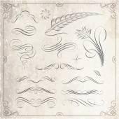 Calligraphic and Decorative Design Elements — Vecteur