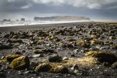 Icelandic landscapes — Stock Photo