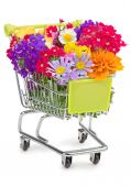 Shopping cart full of wildflowers isolated on white — Stock Photo
