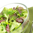 Close up of mixed salad, fork and napkin — Stock Photo #74229221