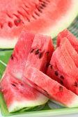 Plátky melounu — Stock fotografie