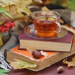 Still life with tea, books and autumn leaves — Stock Photo #53939485