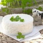 Fresh cottage cheese — Stock Photo #72077175