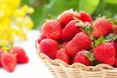 Fresh summer strawberries — Stock Photo