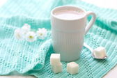 Cup of cocoa and sugar on the mint background — Stock Photo