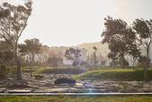 Stone Pathway in  Park — Stock Photo