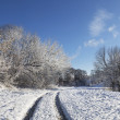 Countryside road through winter field — Stock Photo #61708261