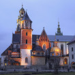 Постер, плакат: Night view of the cathedral of St Stanislaw and St Vaclav and Royal Castle