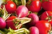 Fondo de verduras — Foto de Stock