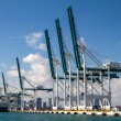 Seaport of Miami — Stock Photo #79409098