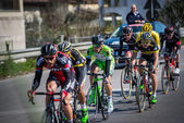 Camaiore, Italy - March 12, 2015: Group of professional cyclists during the second stage of the Tirreno Adriatico 2015 — Stock Photo