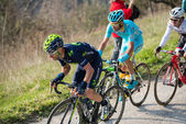 Castelraimondo, Italy March 14, 2015: Group of cyclists during a climb of a stage of the Tirreno Adriatico 2015 — Stock Photo