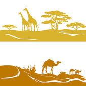 Banner with savanna and desert, silhouette — Vettoriale Stock