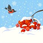 vinter illustration med en gren av Rönn och fågel — Stockvektor  #57073825