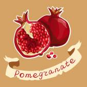 Illustration of pomegranate and its half — Stock Vector