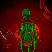 3d 渲染医学插图的肾上腺 — 图库照片