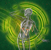 3d render medical illustration of the human adrenal glands  — Foto Stock