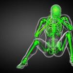 3d render medical illustration of the skeleton bone — Stock Photo #68542365