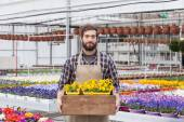 Florist Carrying flowers In a Tray — Stock Photo