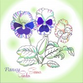 Pansy on green background — Vetorial Stock