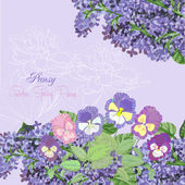Background with lilac and pansies — Stock Vector