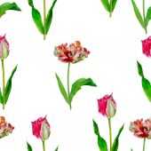 Seamless pattern  with tulips2-01 — 图库矢量图片