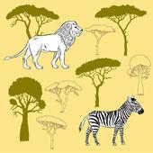Lion, zebra and savanna trees — Vector de stock