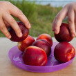 Taking a fruit nectarine — Stock Photo #52915773
