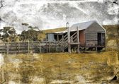 Old rundown shed and cattle yards in country setting — Stock Photo