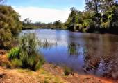 River in country Victoria, Australia — Stockfoto