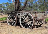 Old Australian settlers horse drawn wagon — Стоковое фото
