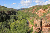 Oak Creek Canyon — Stock Photo