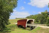 Landscape with Cedar Bridge — Stock Photo