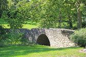 Stony bridge — Stock Photo