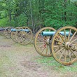Row of cannons — Stock Photo #55933251
