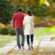 Married couple walking — Stock Photo #52005367