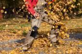 Autumn rake guitar — Stock Photo